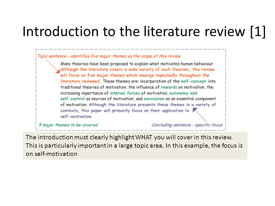 literature review introduction sample
